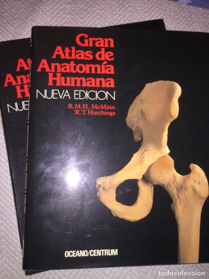 GRAN ATLAS DE ANATOMÍA HUMANA 1 Y 2 NUEVA EDICIÒN (Libros Nuevos - Ciencias, Manuales y Oficios - Anatomía )