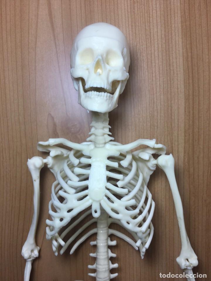 Libros: ERASE UNA VEZ EL CUERPO HUMANO - Atlas anatómico y 2 Cuerpos hombre y mujer - Todo Completo - Foto 6 - 186121976