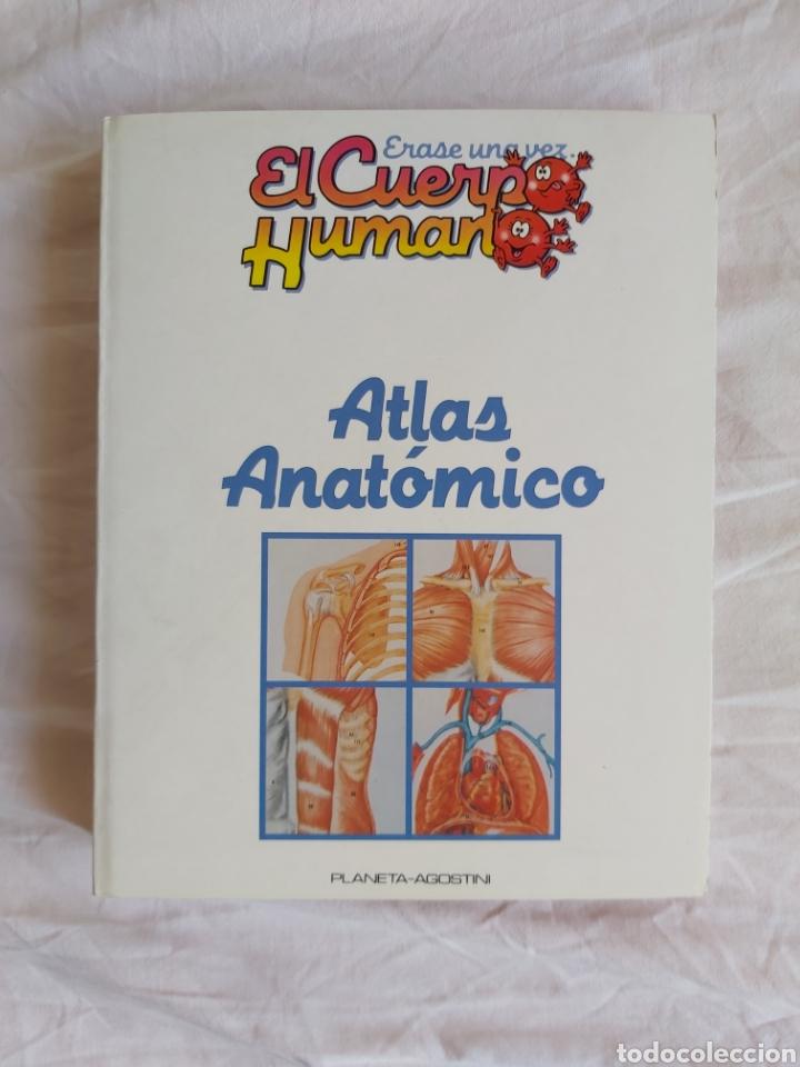 Libros: ERASE UNA VEZ EL CUERPO HUMANO - Atlas anatómico y 2 Cuerpos hombre y mujer - Todo Completo - Foto 12 - 186121976