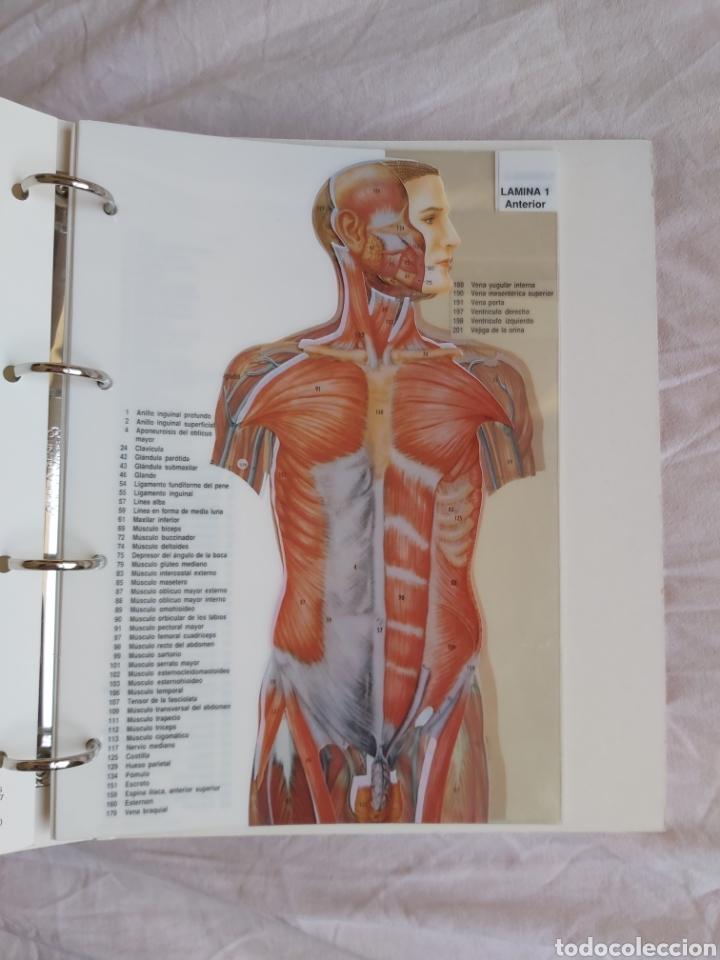 Libros: ERASE UNA VEZ EL CUERPO HUMANO - Atlas anatómico y 2 Cuerpos hombre y mujer - Todo Completo - Foto 13 - 186121976
