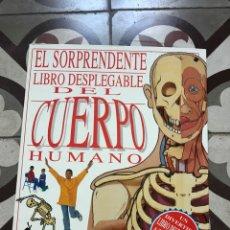 Libros: EL SORPRENDENTE LIBRO DESPLEGABLE DEL CUERPO HUMANO 1,40 M. Lote 190058631