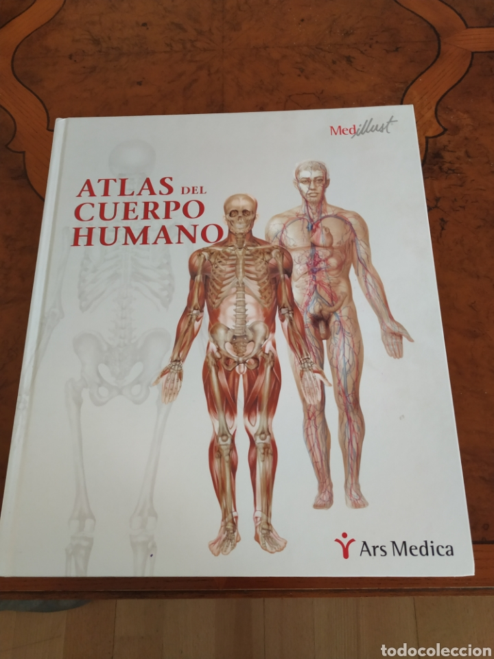 ATLAS DEL CUERPO HUMANO ARS XXI (Libros Nuevos - Ciencias, Manuales y Oficios - Anatomía )