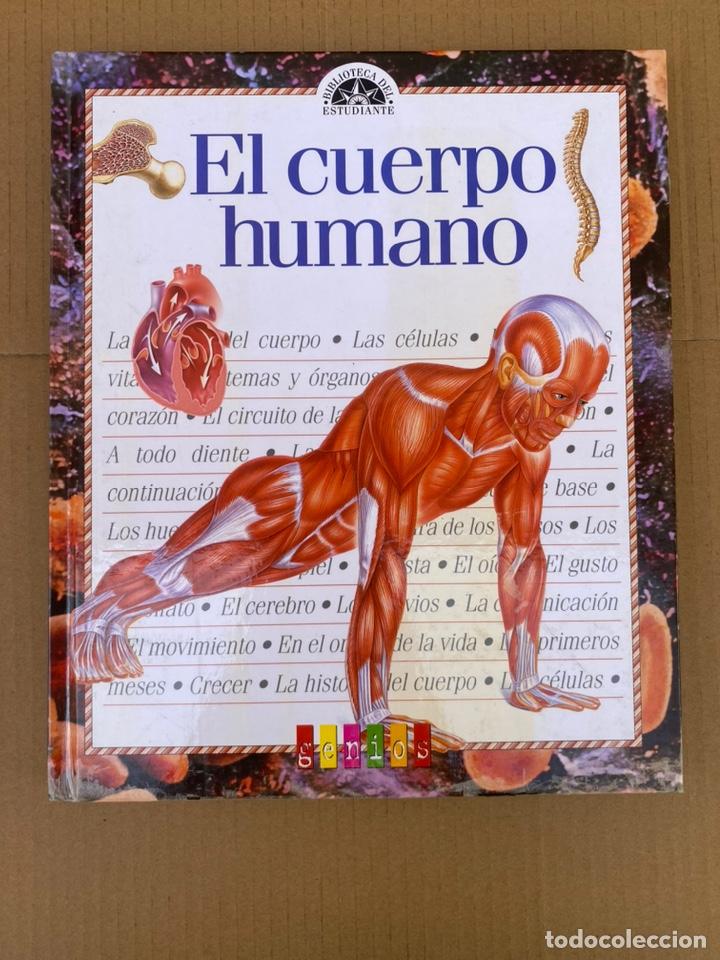 EL CUERPO HUMANO - GUÍA DEL ESTUDIANTE - GENIOS (Libros Nuevos - Ciencias, Manuales y Oficios - Anatomía )