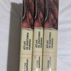 Libros: ATLAS DE ANATOMÍA HUMANA (W.SPALTEHOLZ ). Lote 221602708
