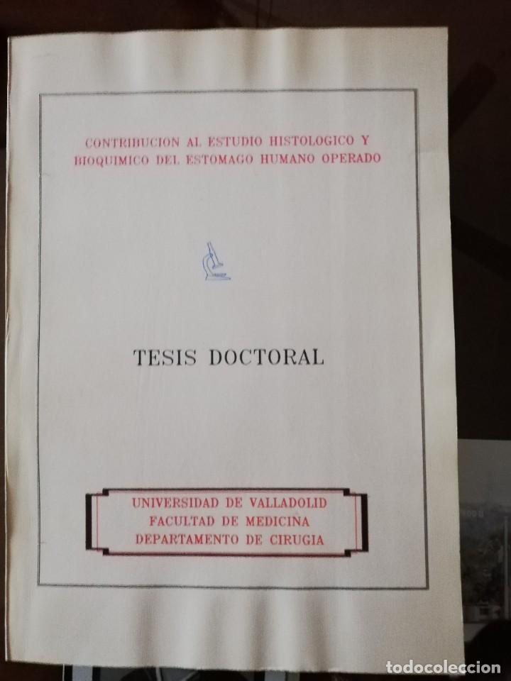 TESIS DOCTORAL UNIVERSIDAD DE VALLADOLID ESTOMAGO HUMANO (Libros Nuevos - Ciencias, Manuales y Oficios - Anatomía )
