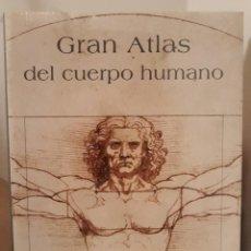 Livros: GRAN ATLAS DEL CUERPO HUMANO. EBRISA. GRAN FORMATO.. Lote 264844729