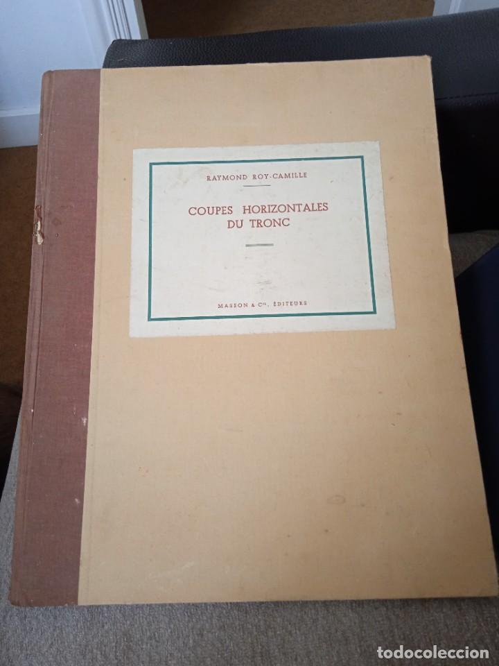 LIBRO COUPES HORIZONTALES DU TRONC (Libros Nuevos - Ciencias, Manuales y Oficios - Anatomía )