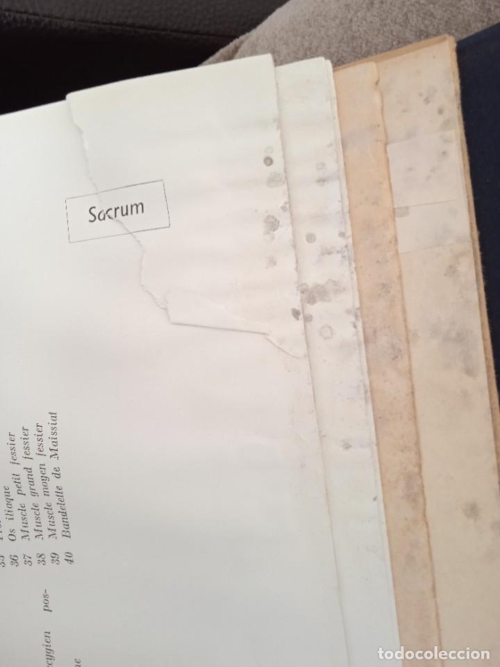 Libros: LIBRO Coupes horizontales du tronc - Foto 2 - 269298788