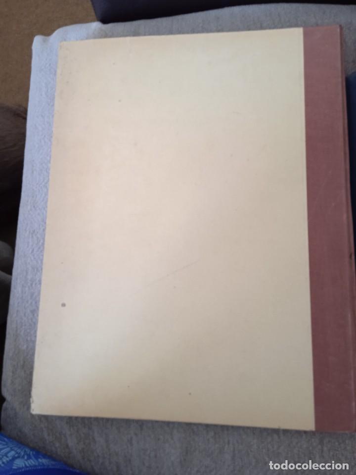 Libros: LIBRO Coupes horizontales du tronc - Foto 3 - 269298788