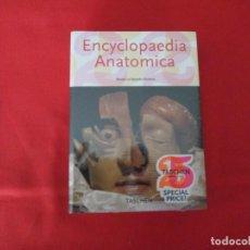 Libros: ENCYCLOPAEDIA ANATOMICA TASCHEN. Lote 272563553