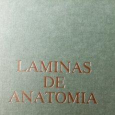 Libros: LÁMINAS DE ANOTOMIA (APARATO DIGESTIVO). Lote 293890388