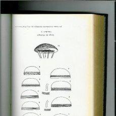 Libros antiguos: CULTURA DEL VASO CAMPANIFORME, LA. (SU ORIGEN Y EXTENSIÓN EN EUROPA) CASTILLO YURRITA, ALBERTO DEL. Lote 27022246