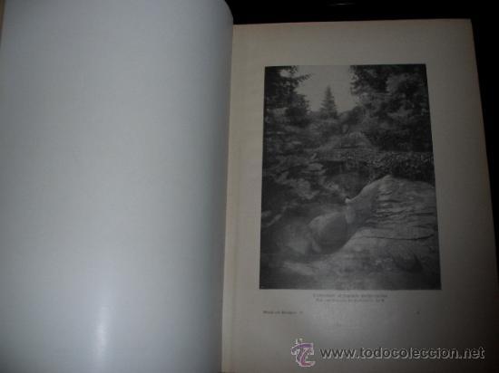 Libros antiguos: WELTALL UND MENSCHHEIT dedicado a la evolución del hombre. Enc. modernista - Foto 5 - 27325015
