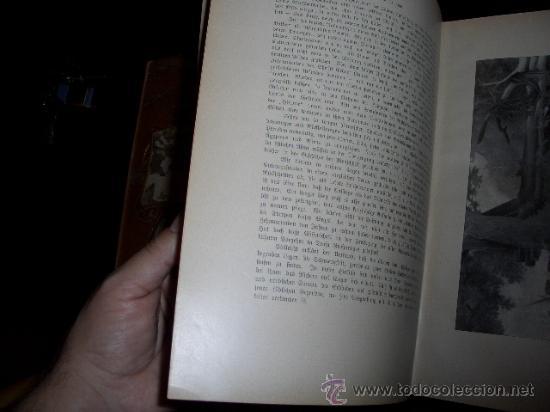 Libros antiguos: WELTALL UND MENSCHHEIT dedicado a la evolución del hombre. Enc. modernista - Foto 6 - 27325015