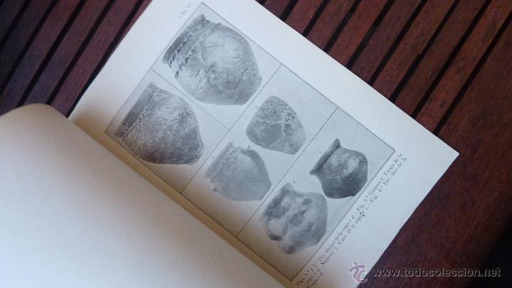 Libros antiguos: excavaciones cueva del segre . memoria excavaciones lleida juan serra vilaro . 1918 nº 7 - Foto 3 - 49721223
