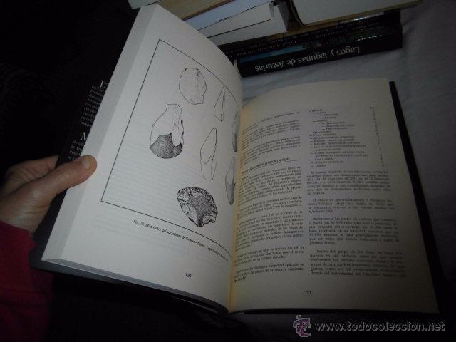 Libros antiguos: GIJON ANTES DE GIJON BREVE APROXIMACION A LOS PRIMEROS GRUPOS DE PREDADORES.J.ADOLFO RODRIGUEZ,M.NOV - Foto 3 - 52839898