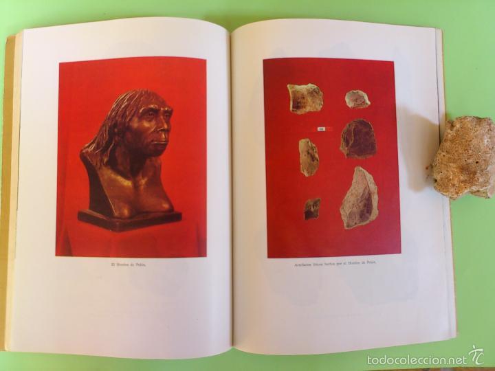 Libros antiguos: Manual prehistoria Europa y el hombre primitivo en china - Foto 6 - 175598419