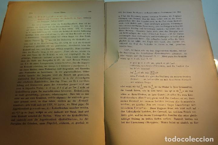 Libros antiguos: PAPYRUS EBERS -DIE MAASSE UND DAS KAPITEL ÚBER DIE AUGENKRANKHEITEN-GEORG EBERS-NºII UND III-1889- - Foto 9 - 94438098