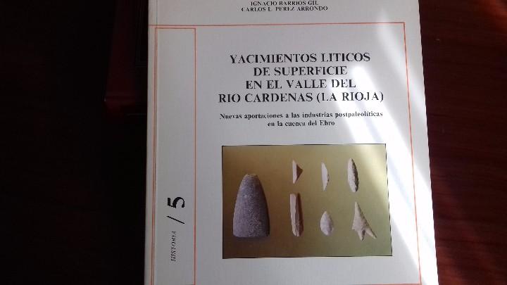 YACIMIENTOS LITICOS DE SUPERFICIE EN EL VALLE DEL RIO CARDENAS (Libros Antiguos, Raros y Curiosos - Ciencias, Manuales y Oficios - Arqueología)