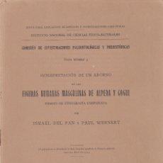 Libros antiguos: ISMAEL DEL PAN Y P. WERNERT: INTERPRETACIÓN ADORNO DE FIGURAS HUMANAS EN ALPERA Y COGUL. MADRID 1915. Lote 128214983