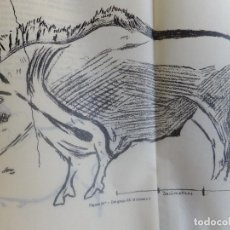 Libros antiguos: T ARANZADI J M BARANDIARAN EXPLORACIONES CAVERNA SANTIMAMIÑE CORTEZUBI BASONDO ( VIZCAYA ) 1925. Lote 130585306