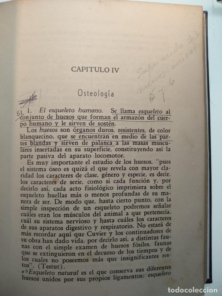 Libros antiguos: CURSO DE ANTROPOLOGÍA JURÍDICA - NOCIONES DE ANTROPOLOGÍA GENERAL - JULIO MORALES COELLO - 1946 - Foto 15 - 137894322