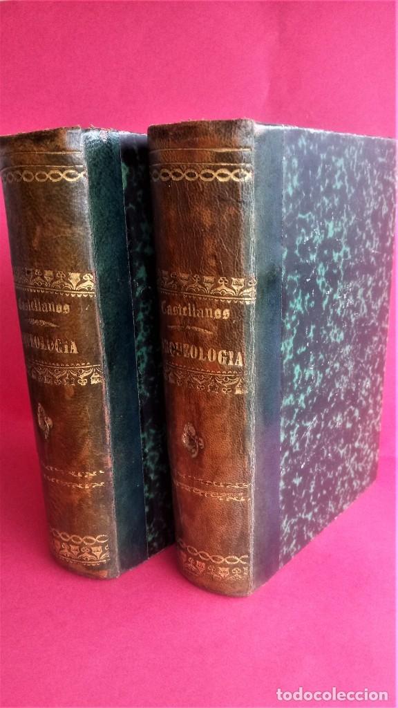 Libros antiguos: LIBRO,II TOMOS OBRA COMPLETA,COMPENDIO ELEMENTAL DE ARQUEOLOGIA,SIGLO XIX,AÑO 1844,POR ANTICUARIO - Foto 2 - 138938002
