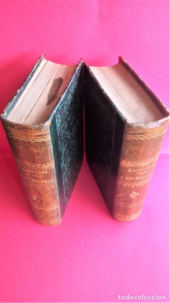 Libros antiguos: LIBRO,II TOMOS OBRA COMPLETA,COMPENDIO ELEMENTAL DE ARQUEOLOGIA,SIGLO XIX,AÑO 1844,POR ANTICUARIO - Foto 13 - 138938002