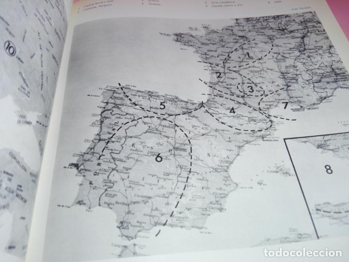 Libros antiguos: CATÁLOGO-100 AÑOS DEL DESCUBRIMIENTO DE ALTAMIRA-1979-VER FOTOS - Foto 7 - 157537130