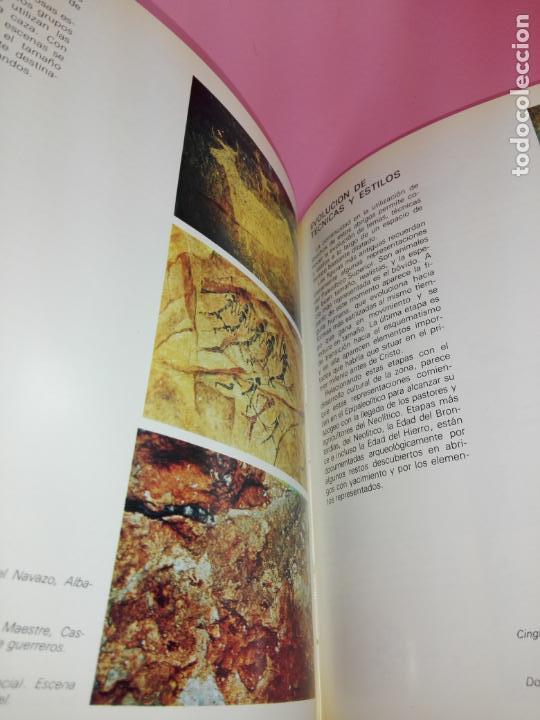 Libros antiguos: CATÁLOGO-100 AÑOS DEL DESCUBRIMIENTO DE ALTAMIRA-1979-VER FOTOS - Foto 13 - 157537130