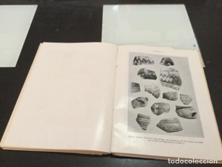 Libros antiguos: Museo Arqueológico provincial de Alicante 1959 - Foto 3 - 165756766