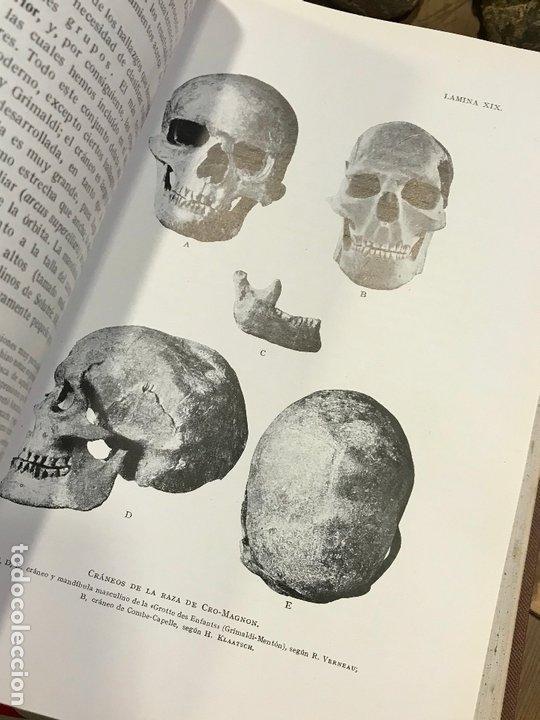 Libros antiguos: 4 en 1 - hombre fosil, horreos y palafitos, estelas discoideas, necropoli de Ibiza - obermaier vives - Foto 6 - 172588714