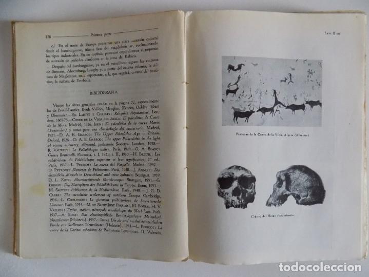 Libros antiguos: LIBRERIA GHOTICA. OBERMAIER.EL HOMBRE PREHISTÓRICO Y LOS ORÍGENES DE LA HUMANIDAD.REVISTA OCCIDENTE - Foto 2 - 172896074