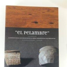 Libros antiguos: EL PELAMBRE, VILLAORNATE (LEÓN) HORIZONTE COGOTAS. MARIA LUZ GONZALEZ FERNÁNDEZ.. Lote 181391237