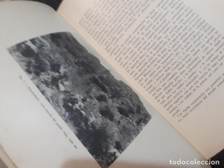 Libros antiguos: La antigua provincia de los Diaguitas. 1936 Márquez Miranda. Ilustrado. - Foto 7 - 187119006