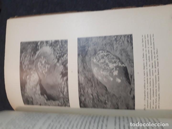Libros antiguos: La antigua provincia de los Diaguitas. 1936 Márquez Miranda. Ilustrado. - Foto 16 - 187119006