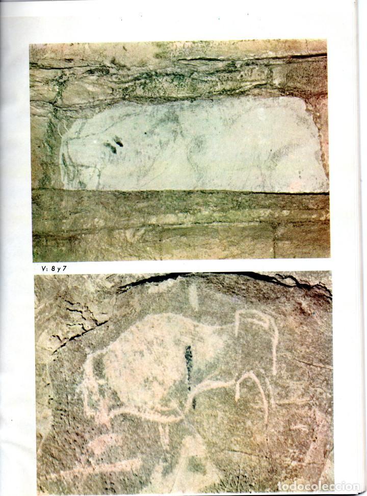 Libros antiguos: 10 TOMOS REVISTA MUNIBE CIENCIAS NATURALES DE PAIS VASCO Y NAVARRA AÑOS 1663 AL 1976 - Foto 2 - 248006560