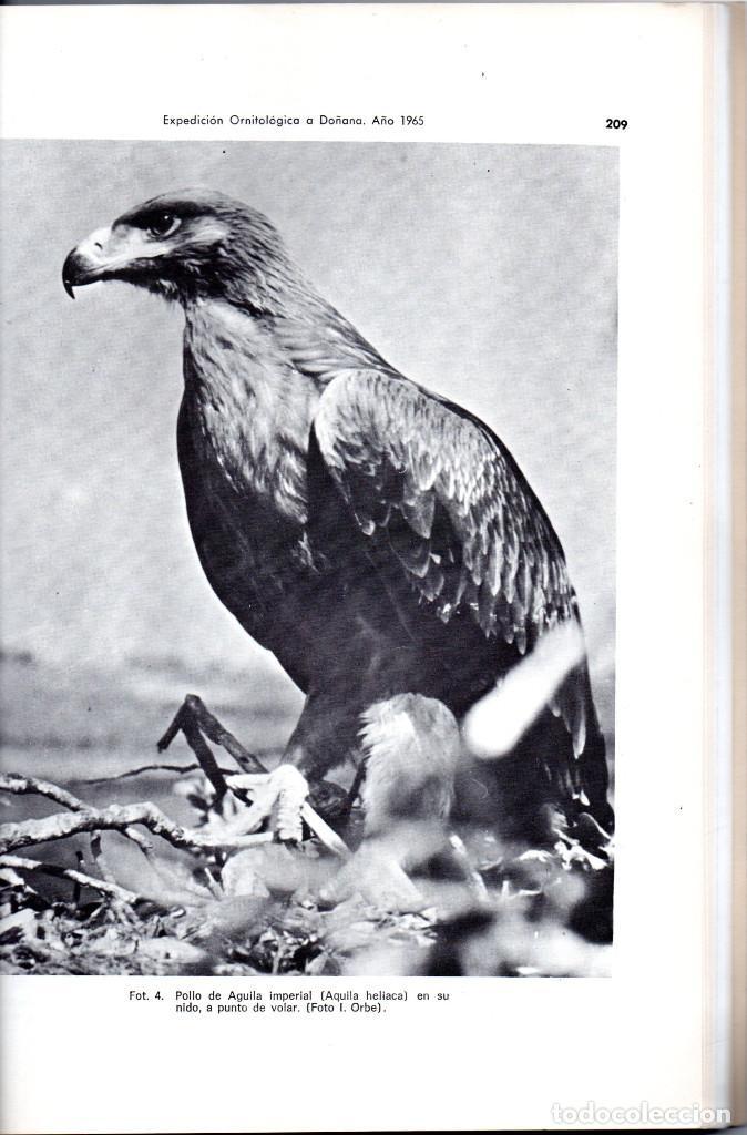 Libros antiguos: 10 TOMOS REVISTA MUNIBE CIENCIAS NATURALES DE PAIS VASCO Y NAVARRA AÑOS 1663 AL 1976 - Foto 4 - 248006560