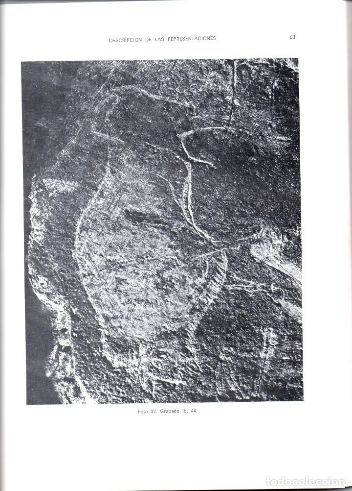 Libros antiguos: 10 TOMOS REVISTA MUNIBE CIENCIAS NATURALES DE PAIS VASCO Y NAVARRA AÑOS 1663 AL 1976 - Foto 7 - 248006560