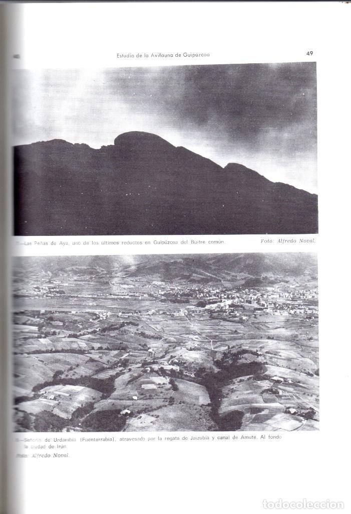 Libros antiguos: 10 TOMOS REVISTA MUNIBE CIENCIAS NATURALES DE PAIS VASCO Y NAVARRA AÑOS 1663 AL 1976 - Foto 10 - 248006560