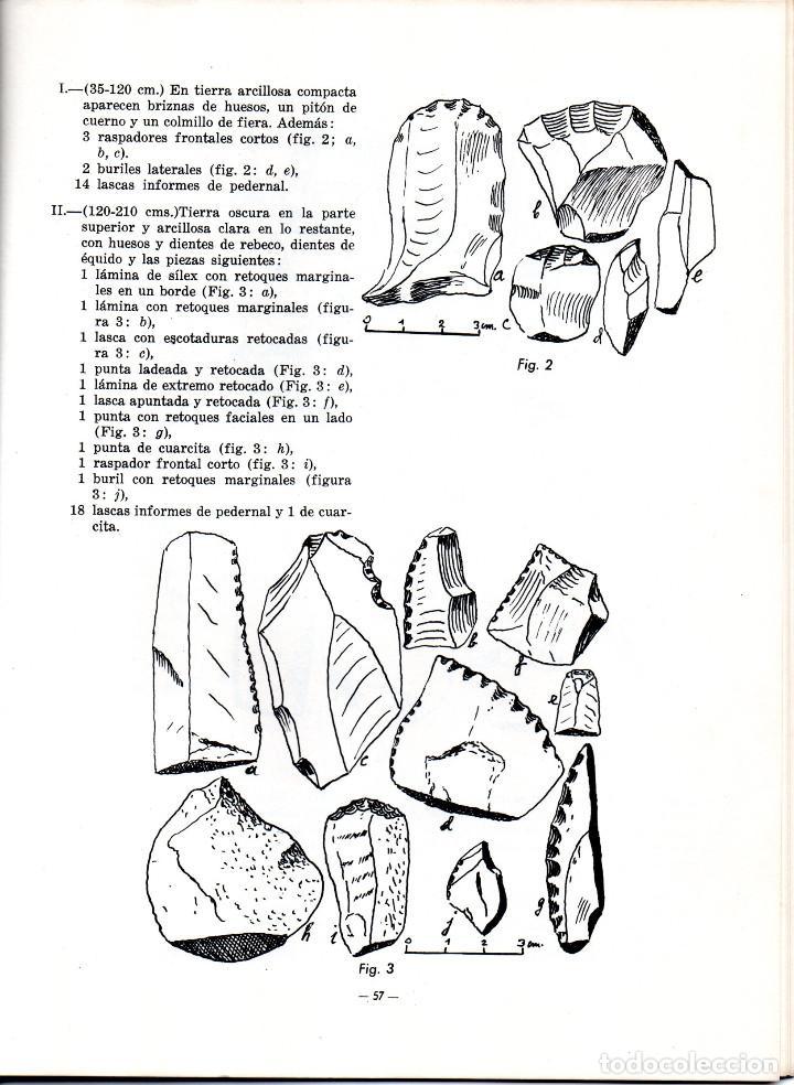 Libros antiguos: 10 TOMOS REVISTA MUNIBE CIENCIAS NATURALES DE PAIS VASCO Y NAVARRA AÑOS 1663 AL 1976 - Foto 11 - 248006560
