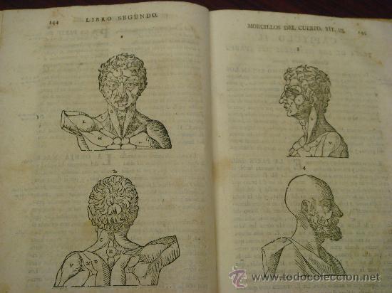 Libros antiguos: VARIA COMMENSURACION PARA LA ESCULTURA, Y ARQUITECTURA. 1795, Juan de Arphe y Villafañe - Foto 9 - 33220192
