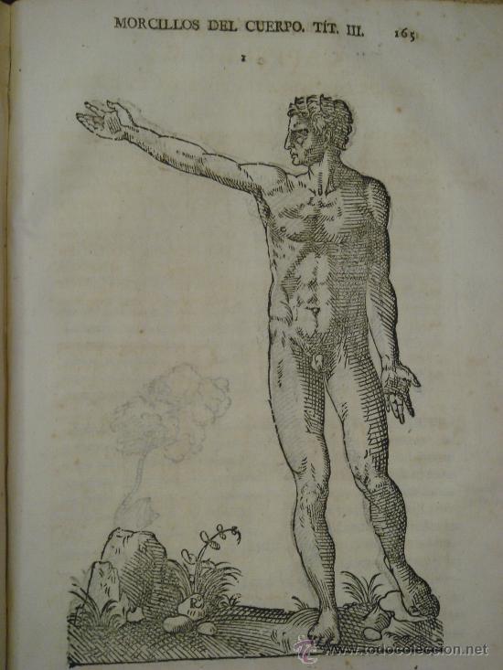 Libros antiguos: VARIA COMMENSURACION PARA LA ESCULTURA, Y ARQUITECTURA. 1795, Juan de Arphe y Villafañe - Foto 10 - 33220192