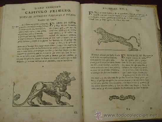 Libros antiguos: VARIA COMMENSURACION PARA LA ESCULTURA, Y ARQUITECTURA. 1795, Juan de Arphe y Villafañe - Foto 11 - 33220192