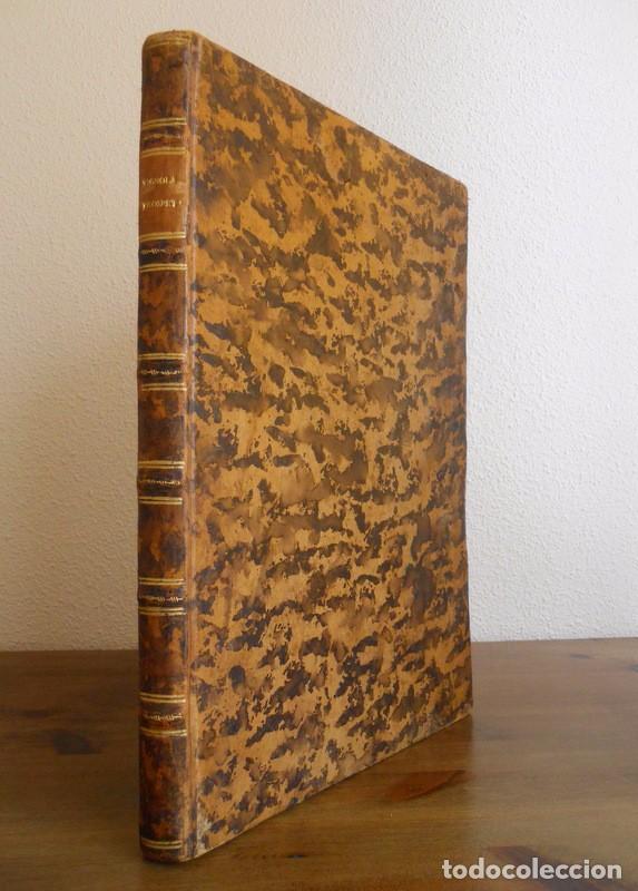 Libros antiguos: BAROZZI DA VIGNOLA: LE DUE REGOLE DELLA PROSPETTIVA..ROMA, 1583 1ª EDIC. ARQUITECTURA RENACIMIENTO - Foto 2 - 87617588