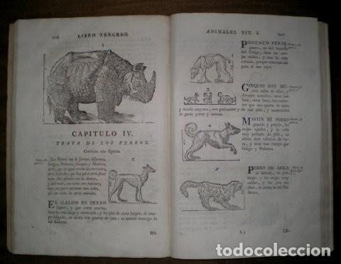 Libros antiguos: ARPHE Y VILLAFAÑE, Juan de: VARIA COMMENSURACION PARA LA ESCULTURA Y ARQUITECTURA. 1795 - Foto 3 - 41460252