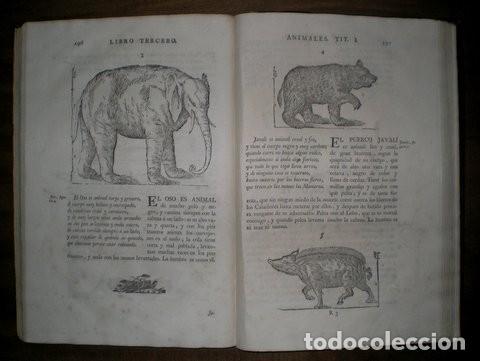 Libros antiguos: ARPHE Y VILLAFAÑE, Juan de: VARIA COMMENSURACION PARA LA ESCULTURA Y ARQUITECTURA. 1795 - Foto 4 - 41460252