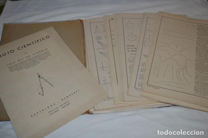 Libros antiguos: Carpeta láminas / DIBUJO CIENTÍFICO / GIL de VICARIO - Barcelona 1935 / Librería BOSCH ¡Mira fotos! - Foto 11 - 266144623