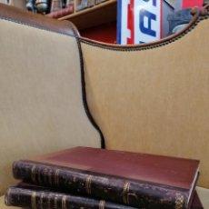 Libros antiguos: DELFIN FERNADEZ Y GONZALEZ CATEDRALEA DE EUROPA. CIRCA 1900. 2 TOMOS. DESPLEGABLES. Lote 276662003