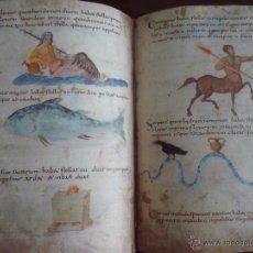 Libros antiguos: CÓDICE DE METZ, SIGLO IX. Lote 29738754